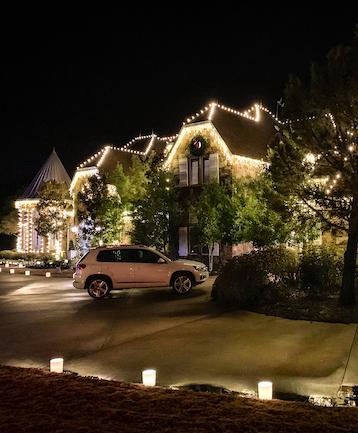 Christmas Lighting Installation - Get Help with Dallas Landscape Lighting