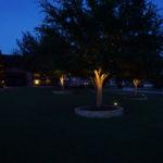 Highland Park outdoor lighting Tree Lights