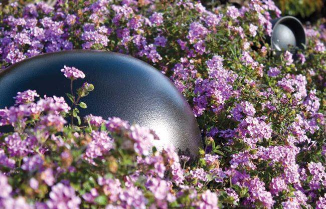 outdoor speakers Dallas