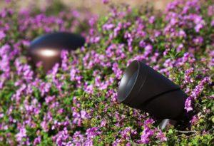 Outdoor Speakers Installation Dallas Landscape Lighting