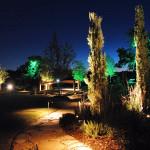 landscape lights installed by Dallas Landscape Lighting