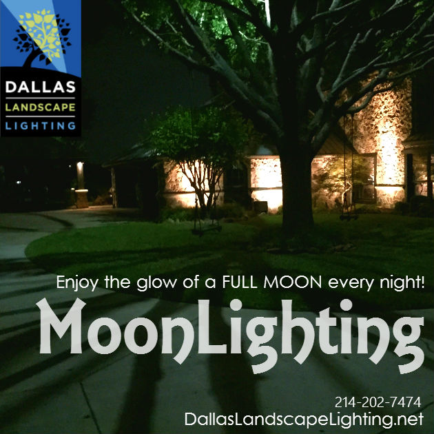 Tree lighting moonlight effect dallas dallas landscape lighting tree lighting moonlight effect dallas aloadofball Choice Image