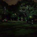 Landscape Lighting installed by Dallas Landscape Lighting