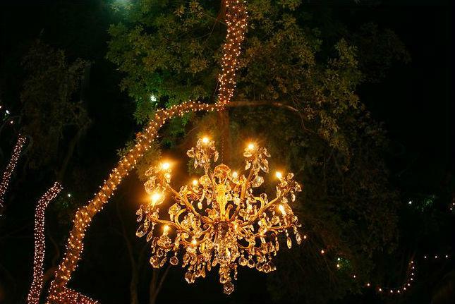 Outdoor Chandelier Wedding Lights Dallas Landscape Lighting