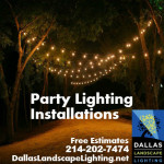 Party Light Installation Dallas Landscape Lighting