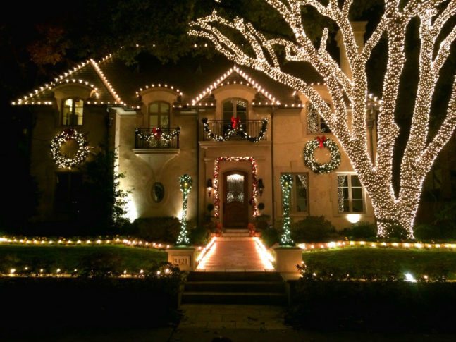 wrapped tree lights Dallas
