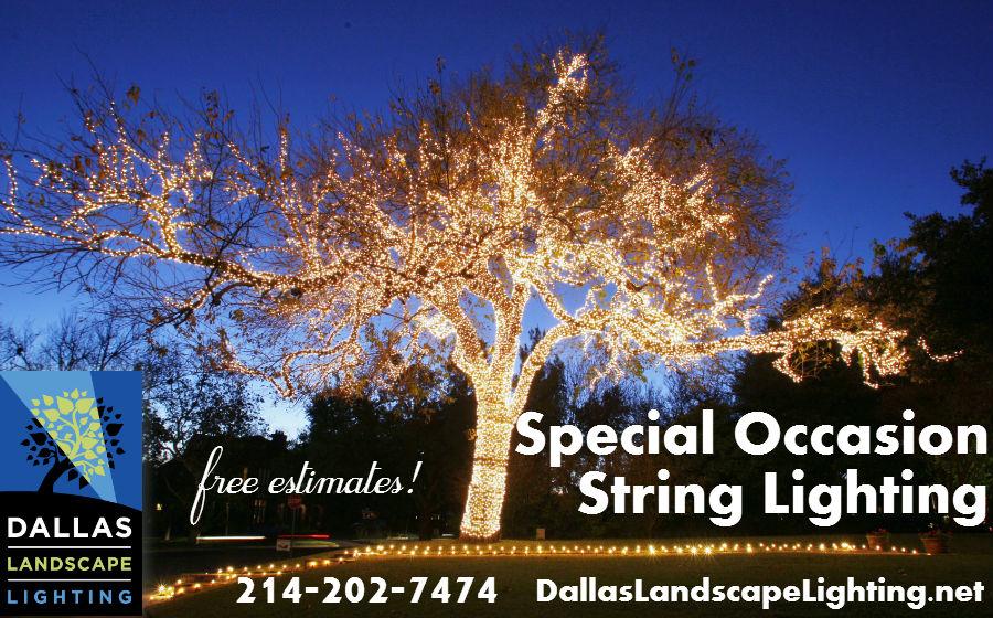 Christmas Light Installation In Dallas Landscape